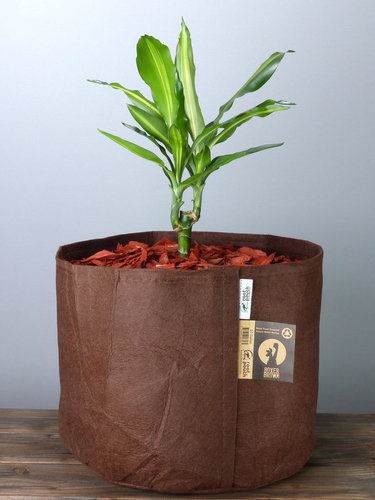Root Pouch Boxer Line #10 Gallon / 39 Liter ohne Griffe