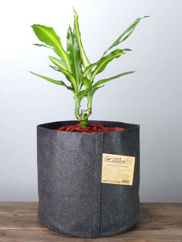 Root Pouch Black #5 Gallon / 16 Liter ohne Griffe