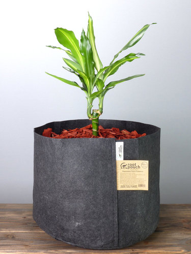 Root Pouch Black #10 Gallon / 39 Liter ohne Griffe