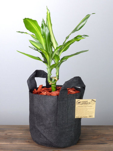 Root Pouch Black #2 Gallon / 8 Liter mit Griffen