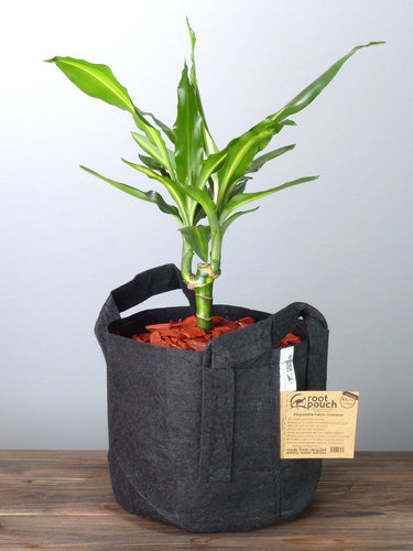 Root Pouch Black #3 Gallon / 12 Liter mit Griffen