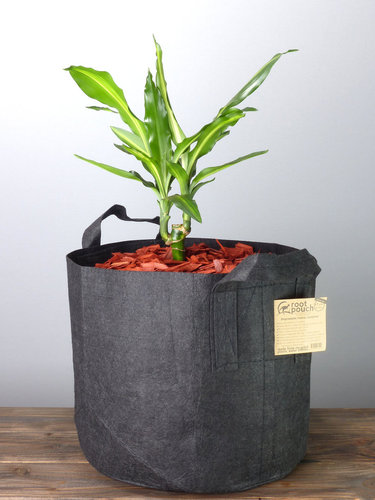 Root Pouch Black #7 Gallon / 30 Liter mit Griffen